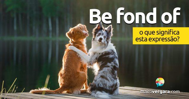 Be Fond Of | O que quer dizer esta expressão?